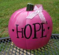 Fundraising ideas: Pink pumpkins | Karen's Avon Walk for ...
