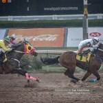 10a Carrera - Sea Firefly Horse