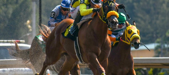 Doble jornada con eliminatorias rumbo al Futurity Garañones
