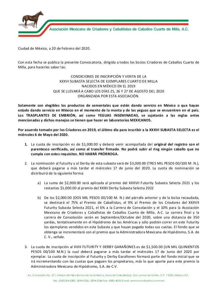 CONVOCATORIA XXXVI SUBASTA SELECTA 2020