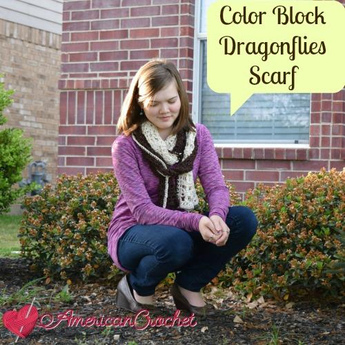 Color Block Dragonflies Scarf | American Crochet