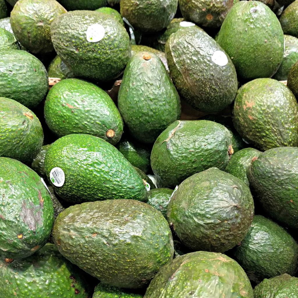 Avocado Boom Verheerende Folgen Durch Avocado Boom In Chile Amerika21