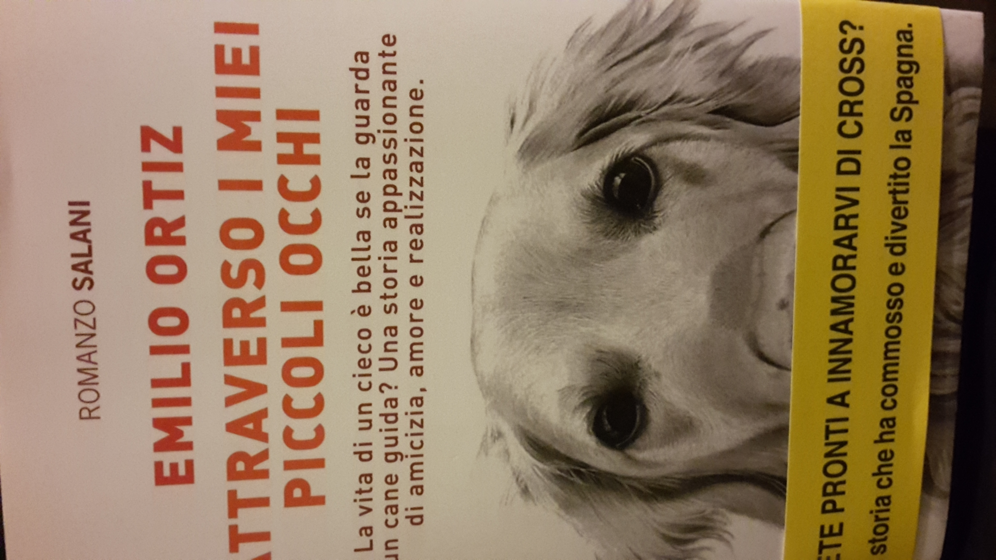 Libro Golden Retriever Intervista A Emilio Ortiz Amici Del Golden Retriever