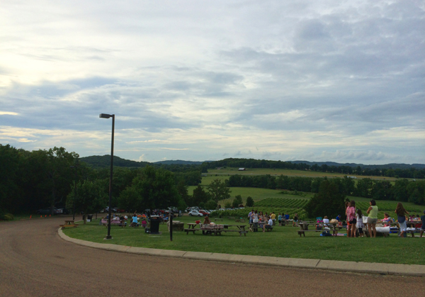 A Moment's Peace at Arrington Vineyards