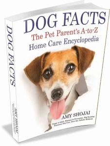 DogFacts