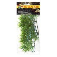 Natural Bush Plant
