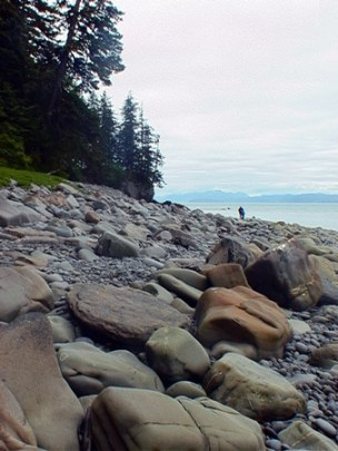 Miles and miles of beautiful, rugged shoreline.