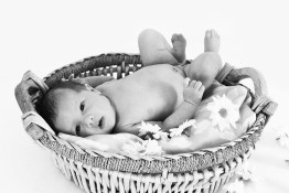 Black and white baby laying down in wicker basket with flowers