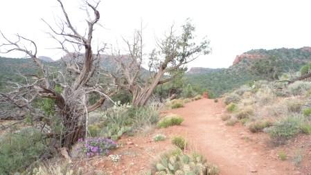 Sedona Vortex Trail
