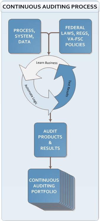 Continuous Auditing Process