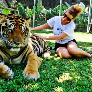 Большой тайский фотоальбом