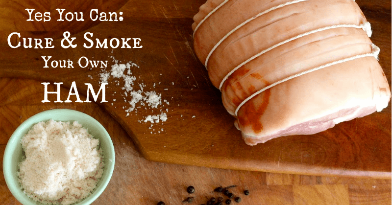 Yes You Can: Cure and Smoke Your Own Ham!