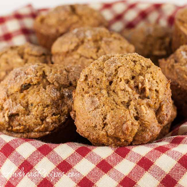 Pumpkin Apple Muffins - Andrea Meyers