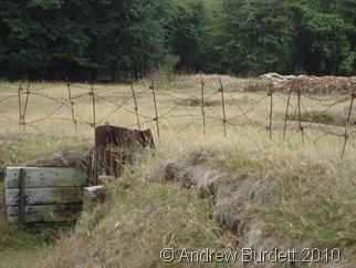 natured_trench