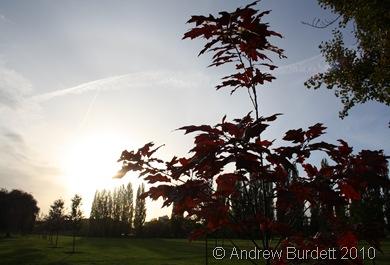 Maidenhead moor red