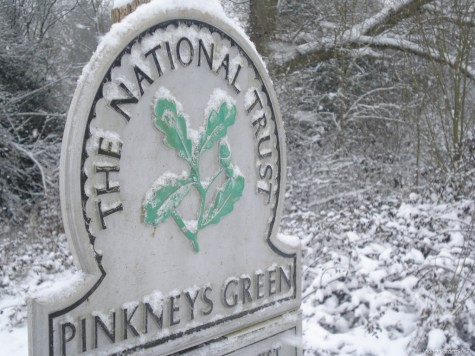 The National Trust woodland around Pinkneys Green was particularly picturesque.