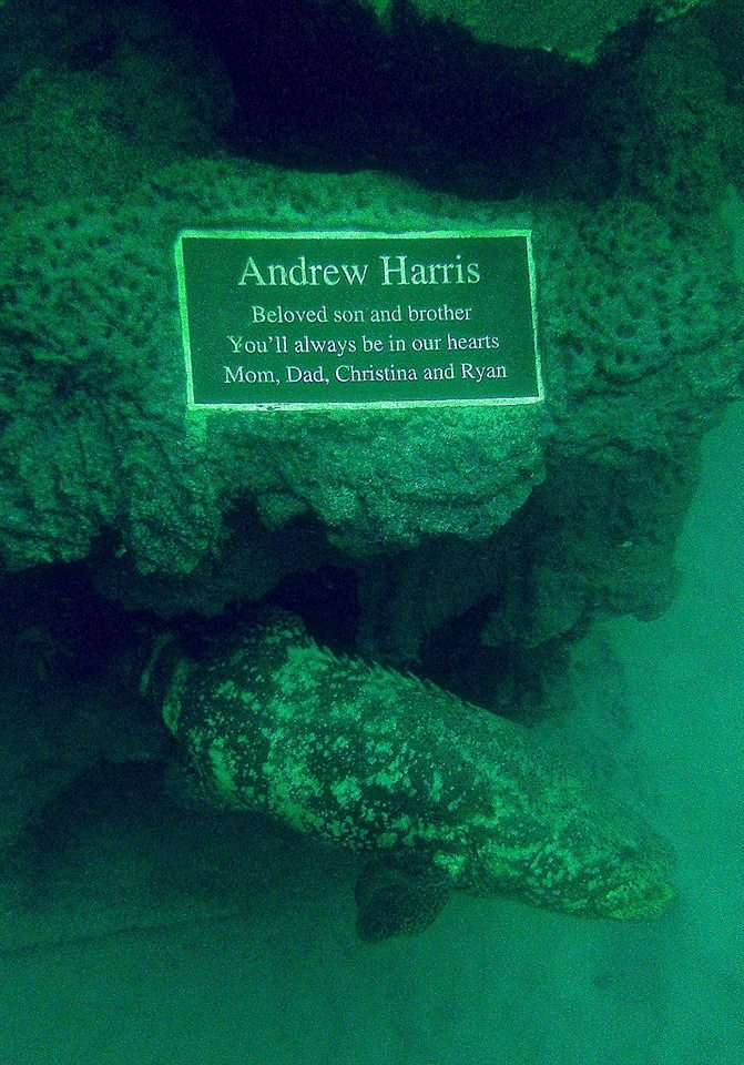 "The Andrew ""Red"" Harris Foundation - Artificial Reef Modules"