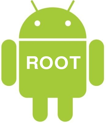 Root - Everything About