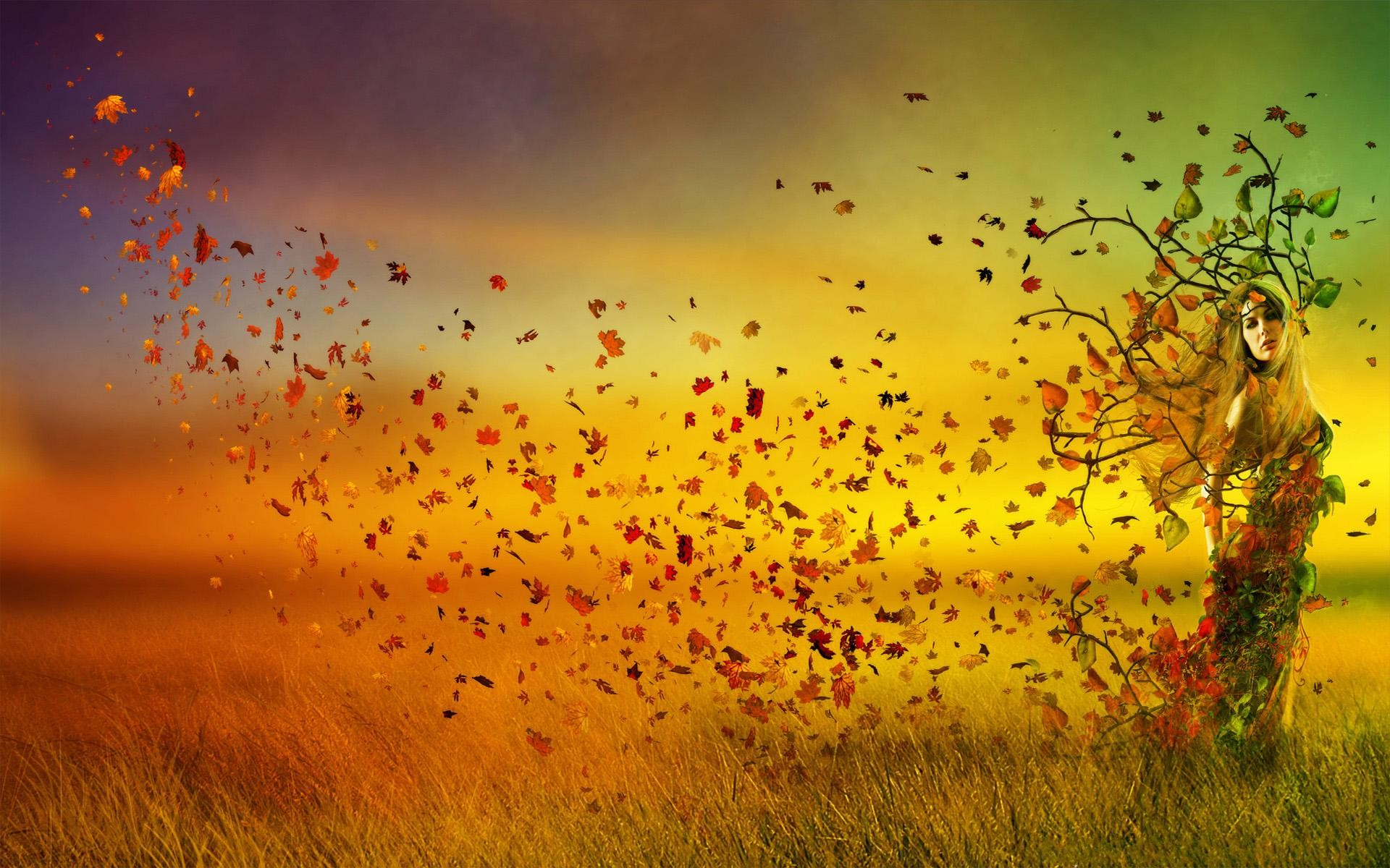 Fall Android Wallpaper 20 Autumn Wallpapers For Your Android