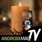 LuDela: Smarte Kerze mit echter Flamme lässt sich per App steuern