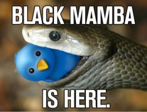 The Black Mamba joins Twitter briefly