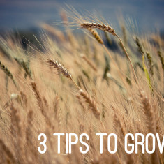 3 tips to growth in any organization by Andy Bondurant