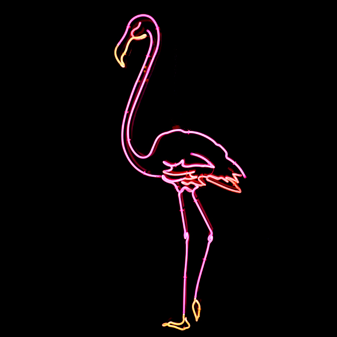 Neon Flamingo Beautiful Pink Flamingo Made In Three Shades Of Pink Neon