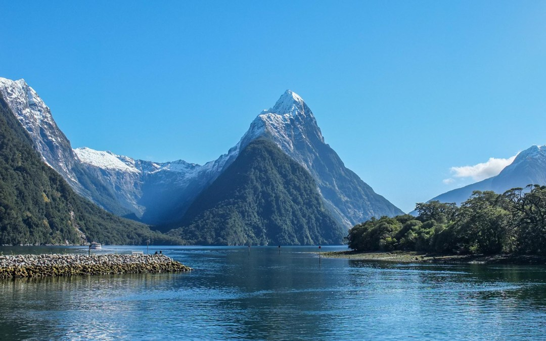 5 Pictures: My Favorites from New Zealand