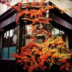 Besondere-Airbnb-unterkünfte-in-Europa-Pub-nahe-London-Außenansicht