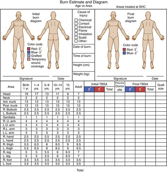 Burn and Inhalation Injuries Anesthesia Key
