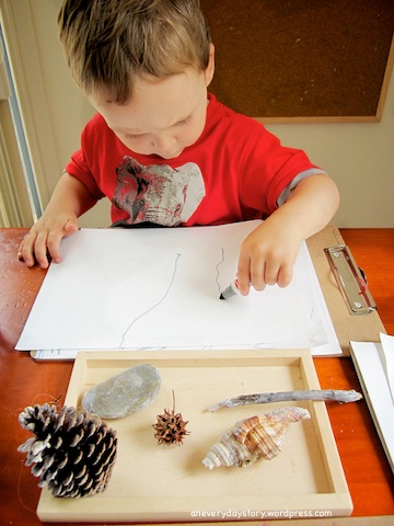 reggio observational drawing with natural materials activities for preschoolers an everyday story Its Not Just a Stick: A Simple Nature Table
