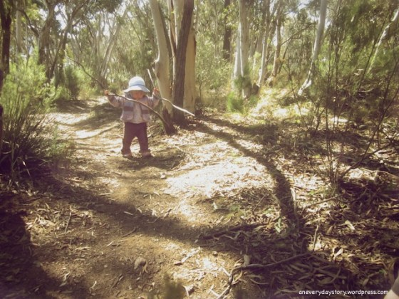 spending time in nature bush walking with toddlers an everyday story A Glimpse of Spring…if only for a moment