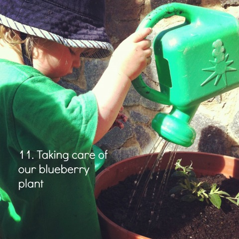 montessori practical life activities watering plants an everyday story This Week7/52