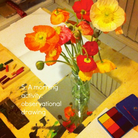 reggio activities observational drawing poppies an everyday story This Week…7/52