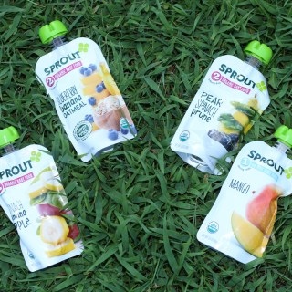 Sprout Organic Baby Food