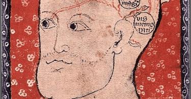 aND 14th Century Brain Image
