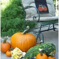 AnExtraordinaryDay.net | Pumpkin Party on the Patio | Fabulous Fall Sitting Area
