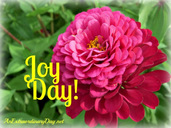 Pretty Pink Zinnia - Joy Day! - AnExtraordinaryDay - Psalm 126:3