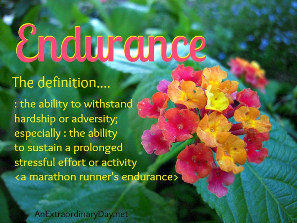 Endurance : the definition :: AnExtraordinaryDay.net