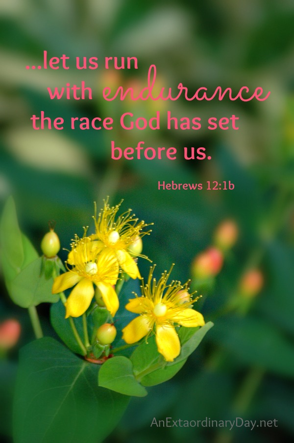 ...let us run with endurance the race God has set before us.  Hebrews 12:1b :: AnExtraordinaryDay.net