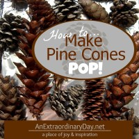 How to Make Pine Cones Pop :: Dry and Debug Pine Cones