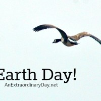 One Earth Day Discovery Broke My Heart