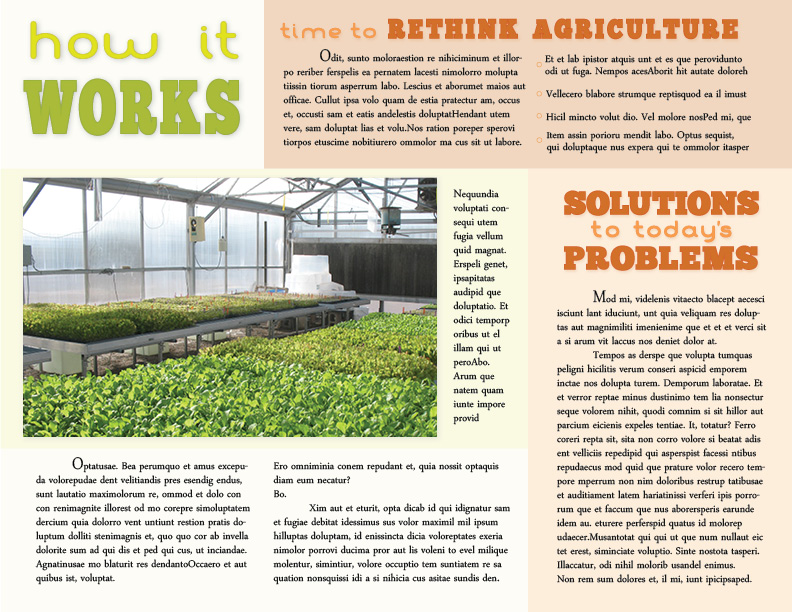 Hydroponic Gardening Sample Brochure - sample broucher
