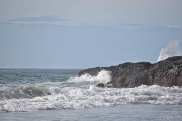 Tuesday Walk & Beach at Devil's Churn (79)