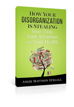 Disorganization Cover 3-D new 2015 small