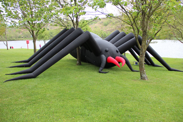 Hire Card Giant Spider | Anglesey Bouncy Castle Hire