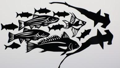 ANIMAFRO-Peixes