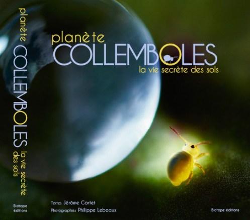 Planète collemboles la vie secrète des sols