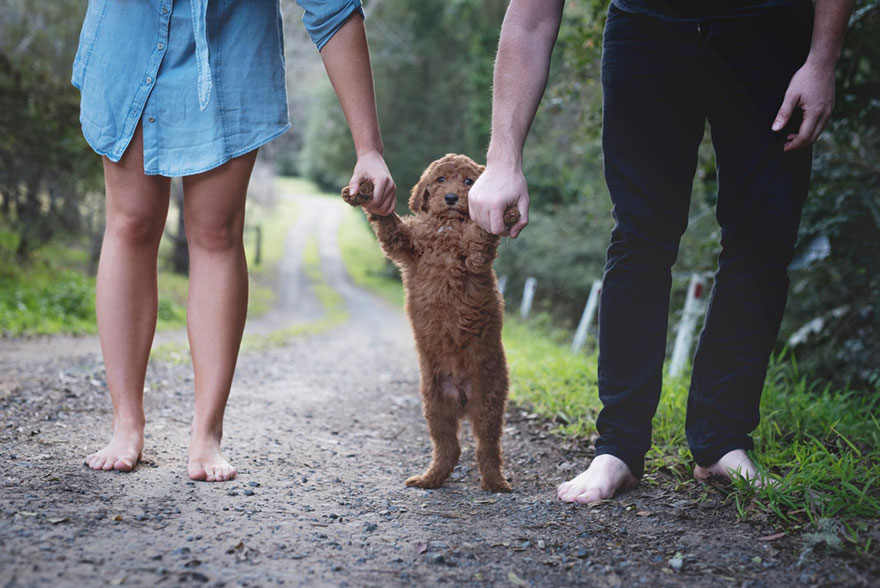 couple-newborn-dog-elisha-minnette-photography-12