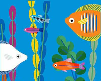 Freshwater Fish Compatibility Chart